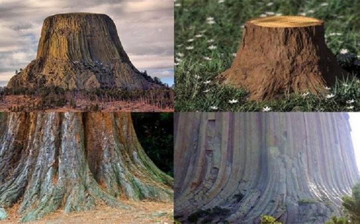 Flat Earth Supporter Claims Mountains sind die alten Überreste gigantischer Siliziumbäume
